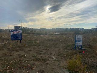 Main Photo: 5603 CAUTLEY Cove in Edmonton: Zone 55 Vacant Lot for sale : MLS®# E4266919