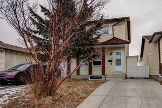 Photo 44: 64 Whitmire Road NE in Calgary: Whitehorn Detached for sale : MLS®# A1055737