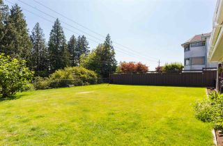 Photo 20: 2666 PHILLIPS Avenue in Burnaby: Montecito House for sale (Burnaby North)  : MLS®# R2289290