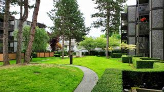 """Photo 4: 112 9672 134 Street in Surrey: Whalley Condo for sale in """"PARKWOODS"""" (North Surrey)  : MLS®# R2475001"""