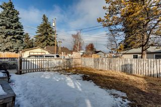 Photo 7: 1527 42 Street SE in Calgary: Forest Lawn Detached for sale : MLS®# A1079125