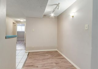 Photo 16: 3135 Rae Crescent SE in Calgary: Albert Park/Radisson Heights Detached for sale : MLS®# A1139656