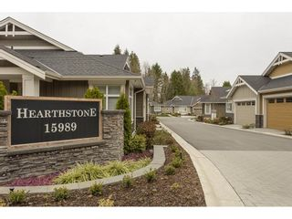 """Photo 1: 2 15989 MOUNTAIN VIEW Drive in Surrey: Grandview Surrey Townhouse for sale in """"HEARTHSTONE IN THE PARK"""" (South Surrey White Rock)  : MLS®# R2163450"""