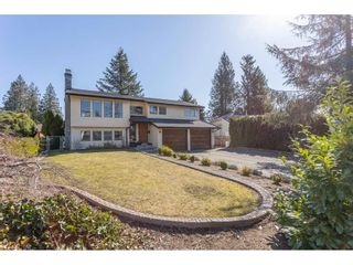Photo 1: 8324 GALE Street in Mission: Mission BC House for sale : MLS®# R2350997