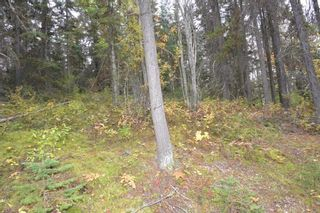 """Photo 9: Lot 8 GLACIER VIEW Road in Smithers: Smithers - Rural Land for sale in """"Silvern Estates"""" (Smithers And Area (Zone 54))  : MLS®# R2410914"""