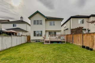 Photo 41: 18 Copperfield Crescent SE in Calgary: Copperfield Detached for sale : MLS®# A1141643