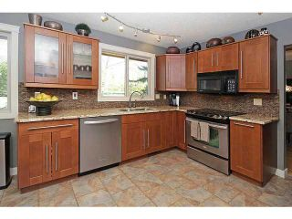 Photo 6: 1004 MAPLEGLADE Drive SE in Calgary: Maple Ridge Residential Detached Single Family for sale : MLS®# C3638640