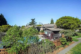 """Photo 22: 508 555 W 28TH Street in North Vancouver: Upper Lonsdale Condo for sale in """"Cedarbrooke Village"""" : MLS®# R2570733"""