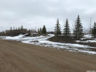 Photo 13: Norlin Acreage in Corman Park: Lot/Land for sale (Corman Park Rm No. 344)  : MLS®# SK846976