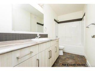 Photo 2: Brand-new home at 377 Berry Street in Winnipeg