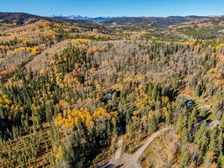Photo 46: 111 Aspen Creek Drive: Rural Foothills County Detached for sale : MLS®# A1151574