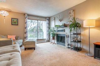 Photo 6: 201 290 Regina Ave in VICTORIA: SW Tillicum Condo for sale (Saanich West)  : MLS®# 829254