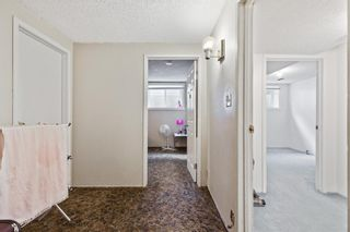 Photo 32: 4772 Rundlehorn Drive NE in Calgary: Rundle Detached for sale : MLS®# A1144252