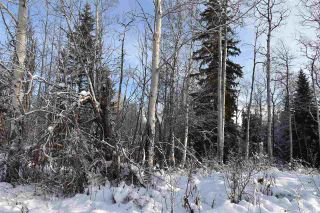"Photo 16: 1 3000 DAHLIE Road in Smithers: Smithers - Rural Land for sale in ""Mountain Gateway Estates"" (Smithers And Area (Zone 54))  : MLS®# R2280132"