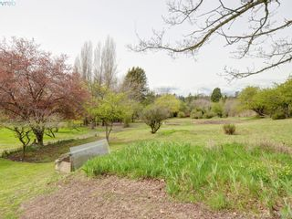 Photo 7: 4362 Wilkinson Rd in VICTORIA: SW Interurban House for sale (Saanich West)  : MLS®# 785556