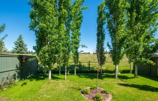 Photo 35: 190 Sagewood Drive SW: Airdrie Detached for sale : MLS®# A1119486