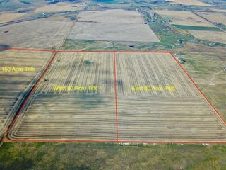 Photo 3: 1/2 Mile N of 434 Ave on 32 ST W: Rural Foothills County Land for sale : MLS®# C4243509
