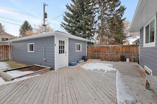 Photo 29: 117 Havenhurst Crescent SW in Calgary: Haysboro Detached for sale : MLS®# A1052524