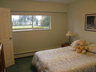 Photo 28: 20319 DEWDNEY TRUNK ROAD in MAPLE RIDGE: Home for sale : MLS®# V1044822
