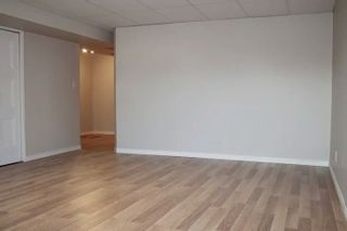 Photo 14: 17823 90 Street in Edmonton: Zone 28 House for sale : MLS®# E4237270