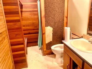 Photo 33: 5339 37A Avenue: Wetaskiwin House for sale : MLS®# E4255449