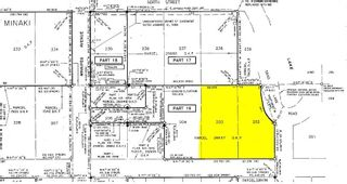 Photo 2: Lots 202&203 Centre Street in Minaki: Vacant Land for sale : MLS®# TB210982