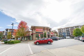 Photo 28: 317 8150 207 Street: Condo for sale in Langley: MLS®# R2562437
