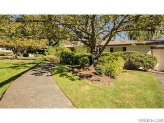 Photo 19: 829 Leota Pl in VICTORIA: SE Cordova Bay House for sale (Saanich East)  : MLS®# 742454
