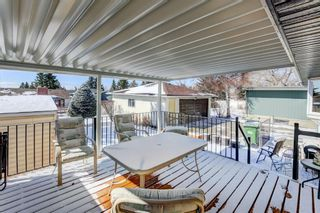 Photo 26: 160 Dalhurst Way NW in Calgary: Dalhousie Detached for sale : MLS®# A1088805