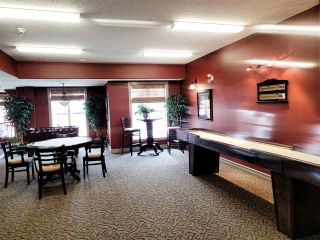 Photo 10: 322 45 INGLEWOOD Drive: St. Albert Condo for sale : MLS®# E4234121