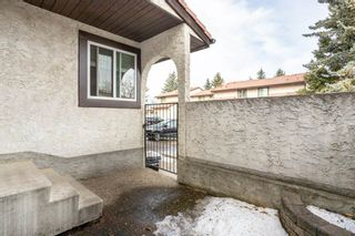Photo 3: 6 17409 95 Street in Edmonton: Zone 28 Townhouse for sale : MLS®# E4234985