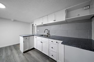 Photo 35: 63 Whiteram Court NE in Calgary: Whitehorn Detached for sale : MLS®# A1107725