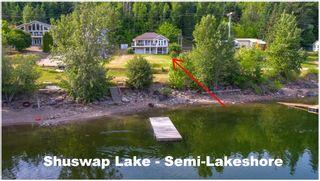 Photo 1: 3502 Eagle Bay Road: Eagle Bay House for sale (Shuswap Lake)  : MLS®# 10185719