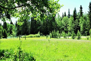 Photo 3: 6124 Township Road 314: Rural Mountain View County Detached for sale : MLS®# A1102303
