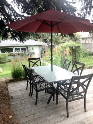 Photo 45: 436 38 Street SW in Calgary: Spruce Cliff Detached for sale : MLS®# A1091044
