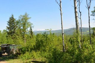Photo 11: 5662 MORRIS Road in Smithers: Smithers - Rural House for sale (Smithers And Area (Zone 54))  : MLS®# R2255055