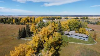 Photo 4: 30226 Springbank Road in Rural Rocky View County: Rural Rocky View MD Land for sale : MLS®# A1046397