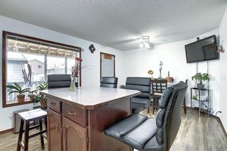 Photo 11: 47 Appleburn Close SE in Calgary: Applewood Park Detached for sale : MLS®# A1049300