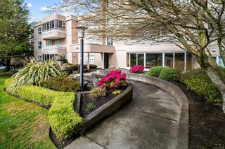 Photo 20: 205 456 Linden Ave in : Vi Fairfield West Condo for sale (Victoria)  : MLS®# 874426