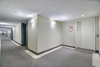 Photo 31: 321 6315 135 Avenue in Edmonton: Zone 02 Condo for sale : MLS®# E4255490