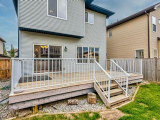 Photo 42: 29 SILVERADO SADDLE Heights SW in Calgary: Silverado Detached for sale : MLS®# A1009131
