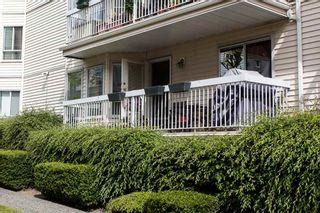 "Photo 4: 114 9299 121 Street in Surrey: Queen Mary Park Surrey Condo for sale in ""HUNTINGTON GATE"" : MLS®# R2087405"