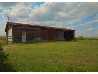 Photo 31: 155013 B Range Road 275: Rural Willow Creek M.D. House for sale : MLS®# C4019954