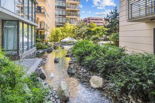 Photo 29: 605 707 Courtney St in : Vi Downtown Condo for sale (Victoria)  : MLS®# 882073