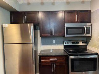 Photo 14: 303 15 Saddlestone Way NE in Calgary: Saddle Ridge Apartment for sale : MLS®# A1099242