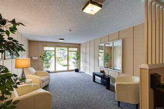 Photo 21: 104 1040 Rockland Ave in Victoria: Vi Downtown Condo for sale : MLS®# 887045