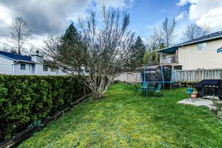 Photo 17: 11265 HARRISON Street in Maple Ridge: East Central House for sale : MLS®# R2046862