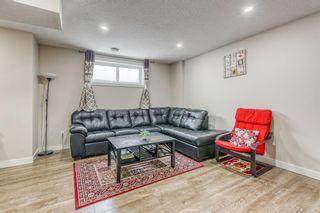 Photo 25: 47 Savanna Street NE in Calgary: Saddle Ridge Row/Townhouse for sale : MLS®# A1113640