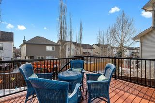 Photo 14: 215 COPPERFIELD Manor SE in Calgary: Copperfield Detached for sale : MLS®# C4288543