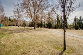 Photo 31: 3 Maple Way SE: Airdrie Detached for sale : MLS®# A1100248